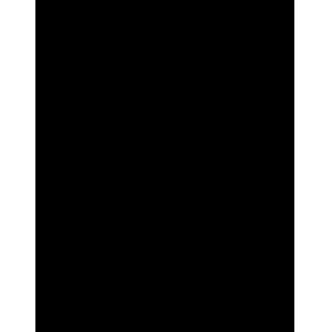 Incident Response Service Icon